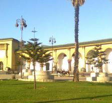 Tangier's Tour