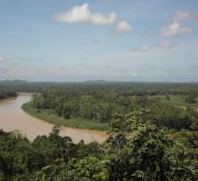 A wildlife & jungle trekking