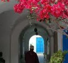 Carthage Sidi BouSaid