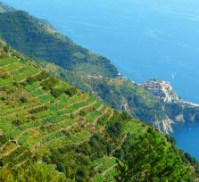 Join me on a Cinque Terre shore excursion