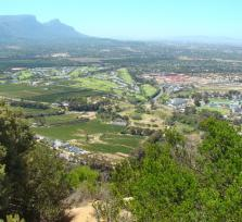 Meet me for a 1/2 Day, Constantia Valley Winelands