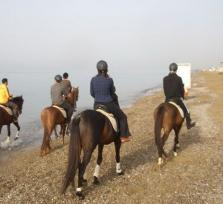 Belek: Horseback Riding in the Forest or the Beach