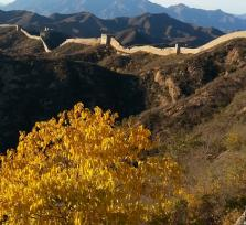 Great Wall Experience day tour