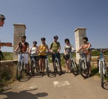 1 Day Bike & Wine Tour in Burgundy