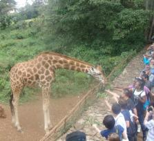 1 Day Nairobi Excursion