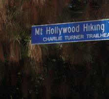 Hollywood Hills Hike