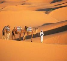 Walk the Sahara Desert with me