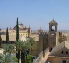Cordoba and Arab Mosque minivan tour incl. official guide - A great ancient cultural city