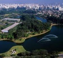 Meet me and explore awesome Sao Paulo, the biggest city of South America!