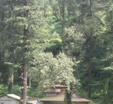 South Face of Shimla