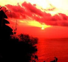 Enjoy this with me: Uluwatu Temple And Jimbaran Bay Dinner