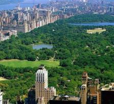 Central Park 1 Hours Guided Pedicab Tour